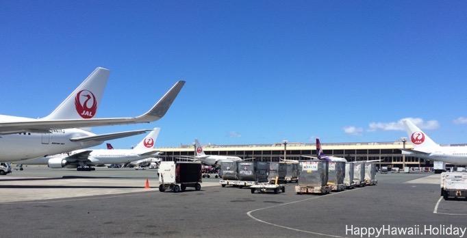 ホノルル空港の JAL