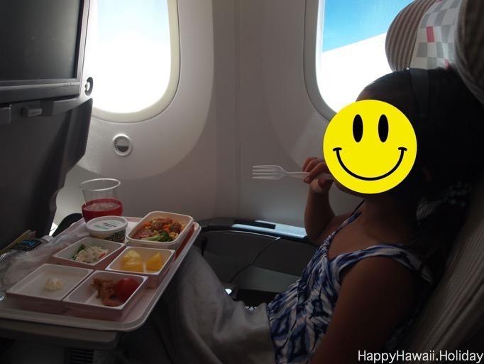 JAL 787 の写真